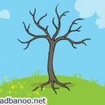 شعر درخت کچل