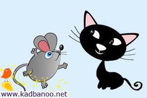 شعر بازی موش با گربه