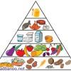 بهترین راه برای پیشگیری و درمان چاقی