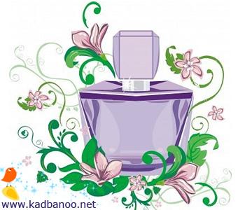 تفاوت عطر و ادکلن چیست؟