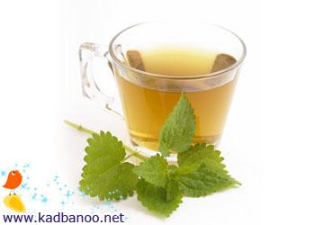 یک فنجان چای گزنه برای کسب انرژی