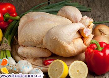 نکات بهداشتی در رابطه با گوشت مرغ