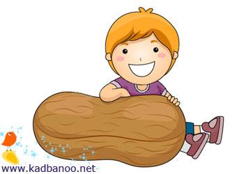 بادام زمینی برای کودکان زیر یک سال ممنوع