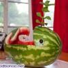 تزیین هندوانه به شکل نهنگ