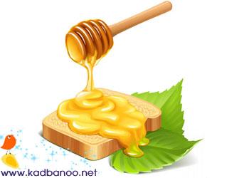 عسل چاق می کند یا لاغر